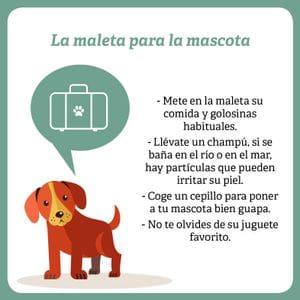 las maletas para tu perro