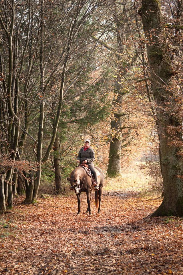 Equitación La Garrotxa