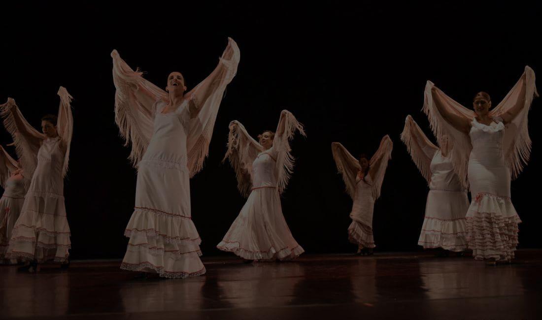Dansa clàssica, contemporània, jazz, claqué, flamenco...