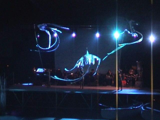 Espectáculo Lago 2004
