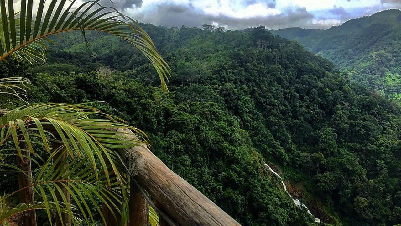 Parc Nacional Carara