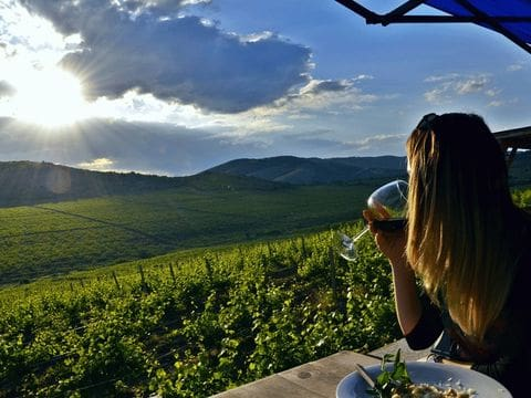 Regiones vinícolas de Macedonia
