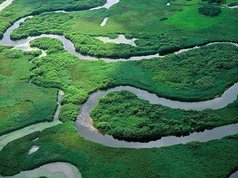 Parque Nacional de Biebrza