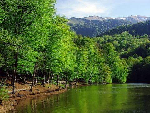 Lago Parz