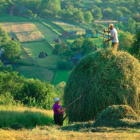 Vida rural a Breb