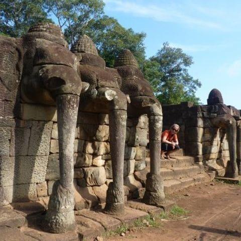 Elephant Terraces