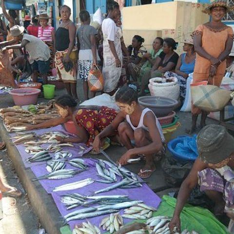 Mercado de pescado de Morondava