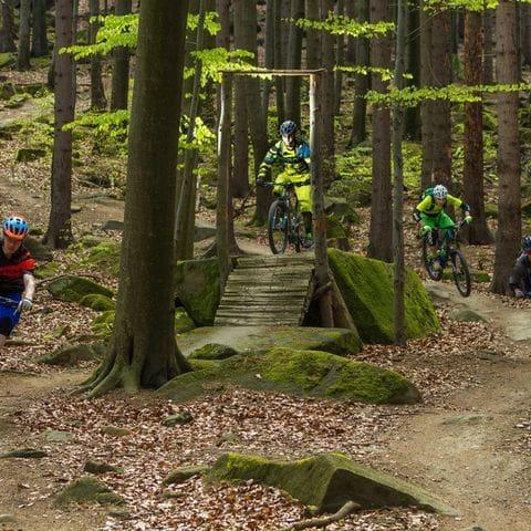 Rutas en Mountainbike en Jeseníky