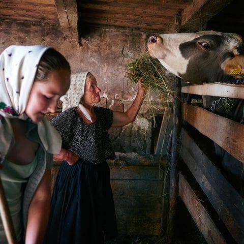 Vida tradicional en Maramures