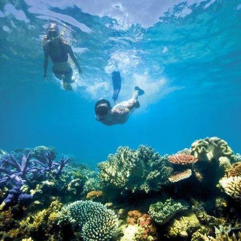 snorkeling-koh-rong