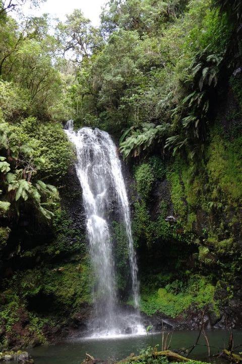 Montagne d'Ambré national park
