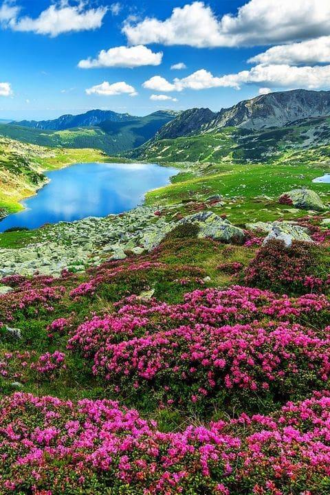 Parque Nacional de Retezat