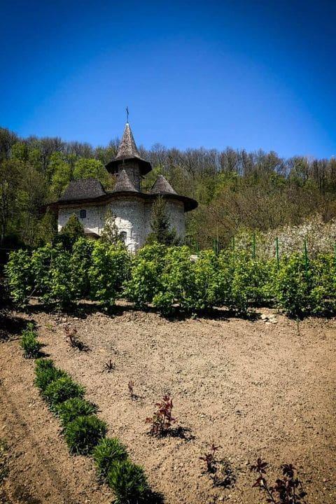 Monasterio de Rudi
