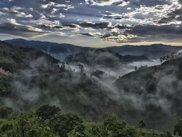 bwindi impenetrable national park