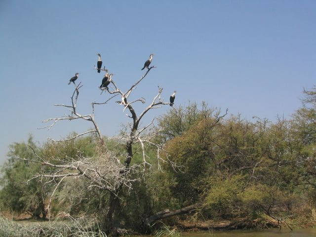 Norte de Senegal