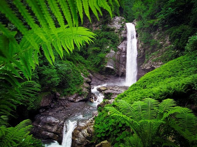 Parque nacional de Lagodekhi