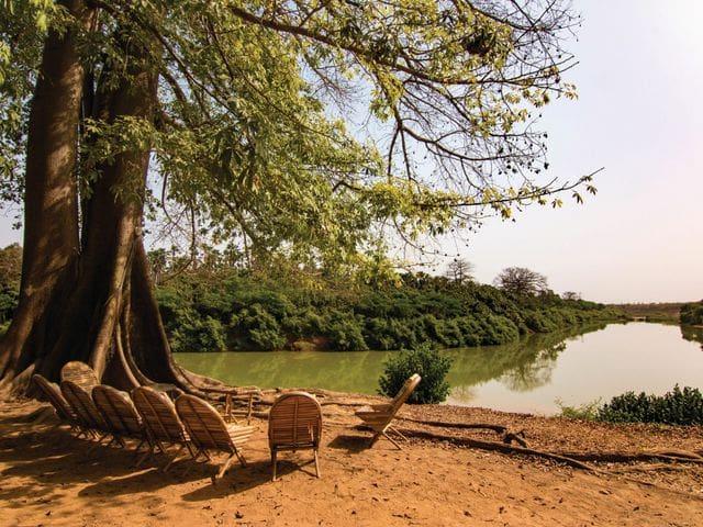 Desde nuestro lodge en el Parque Nacional Niokolo Koba