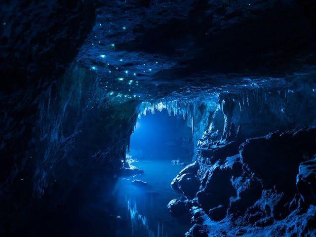 Bioluminiscencia en la cueva de Waitomo