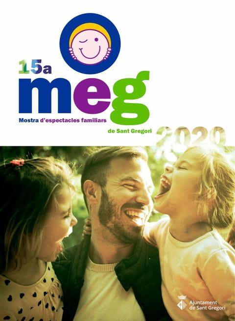 Programa MEG 2020