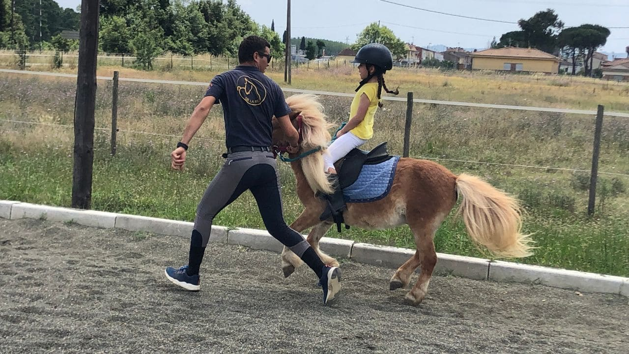 Centro Ecuestre la Selva - Kinder Pony