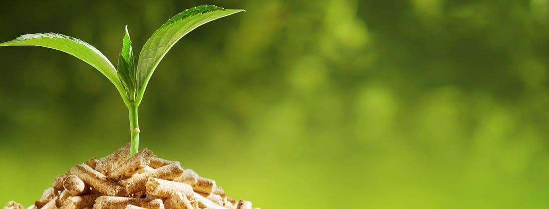 Calderes de biomassa, estufes de pèl·lets, energia solar tèrmica, energia fotovoltaica, terra radiant, climatització i plaques solars