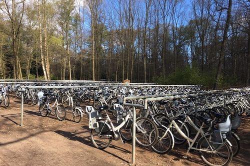 witte-fietsen-het-nationale-park-de-hoge