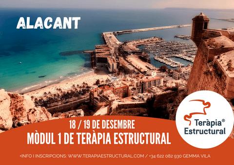 Mòdul 1 de Teràpia Estructural a ALACANT, 18 i 19 de desembre