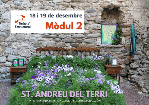 Mòdul 2 de Teràpia Estructural a SANT ANDREU DEL TERRI, 18 i 19 de desembre