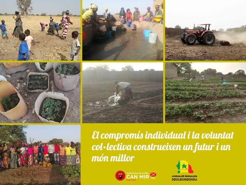 Proyecto Bouloukounda_Agrícola
