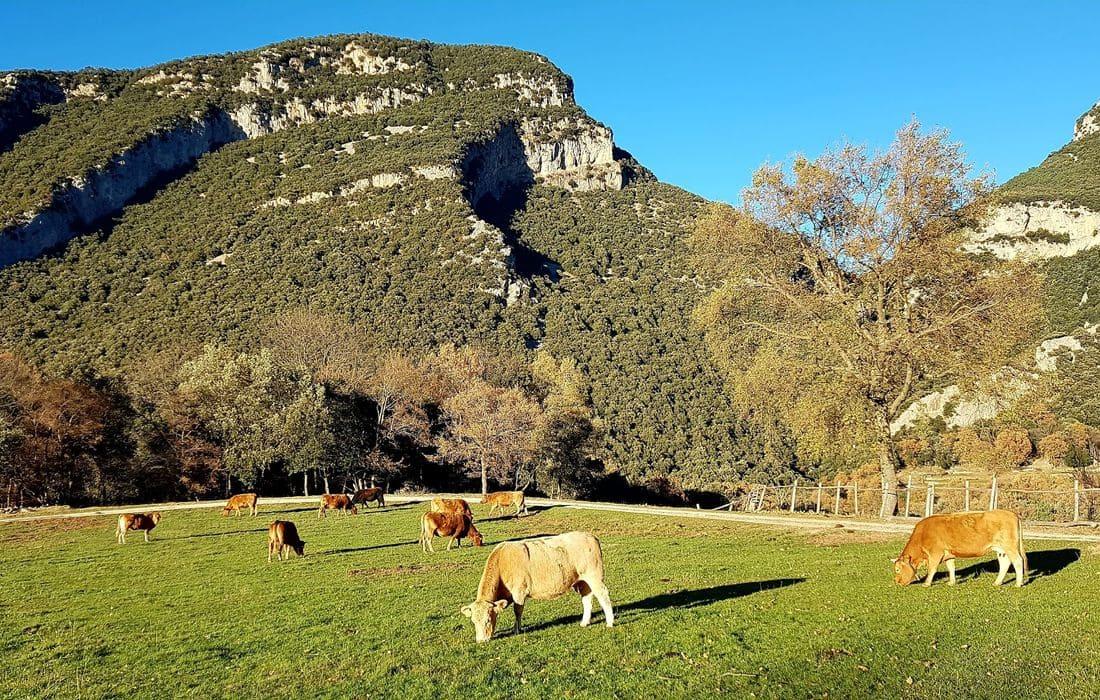 Entre Banyoles - Besalú - Figueres