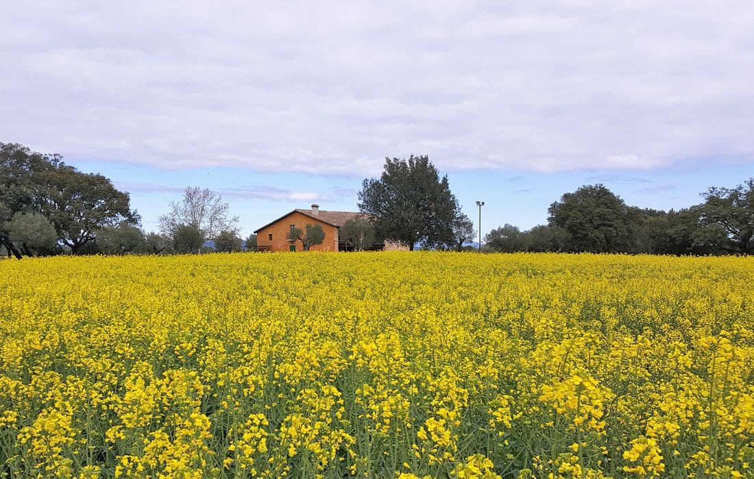 Privileged location between Olot, Banyoles and Figueres