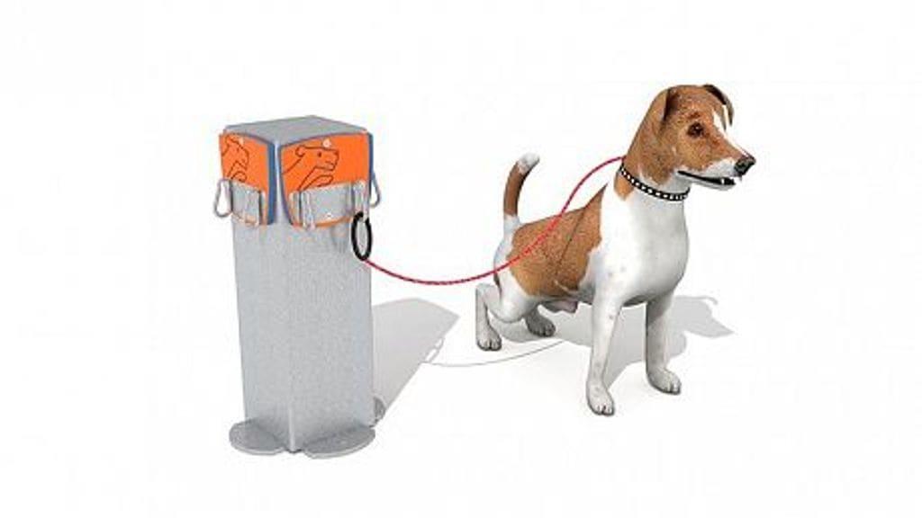 Agility Columna per a Lligar els Gossos