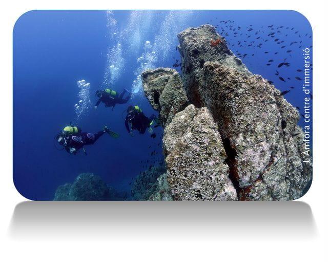 punto de inmersión en la Mar Menuda, Tossa de Mar