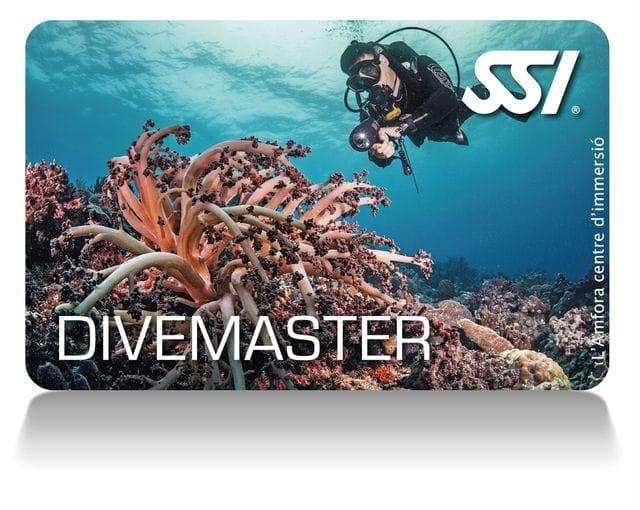 Curso Divemaster en Tossa de Mar, Costa Brava