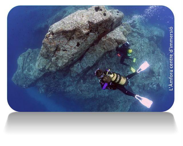 Buceo en Roca Muladera en Tossa de Mar, Costa Brava