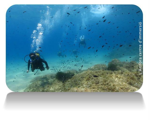 Mar Menuda en Tossa de Mar, Costa Brava