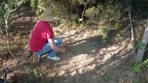 Preparació del terreny