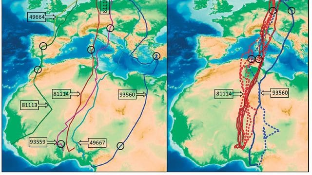 Veuràs exemples extraordinaris i vídeos dinàmics de rutes migratòries d'ocells marcats amb GPS. Aprendràs que per als ocells, les distàncies són gairebé irrellevants.