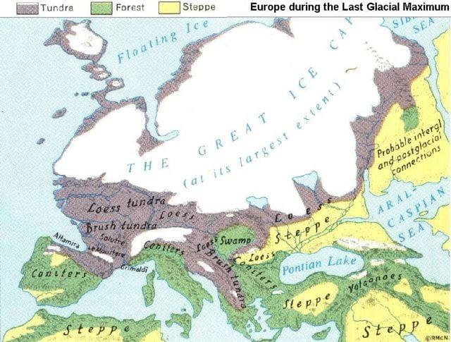 Aprendràs com les glaciacions van moldejar el fenòmen migratori.
