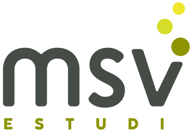 MSV Estudi