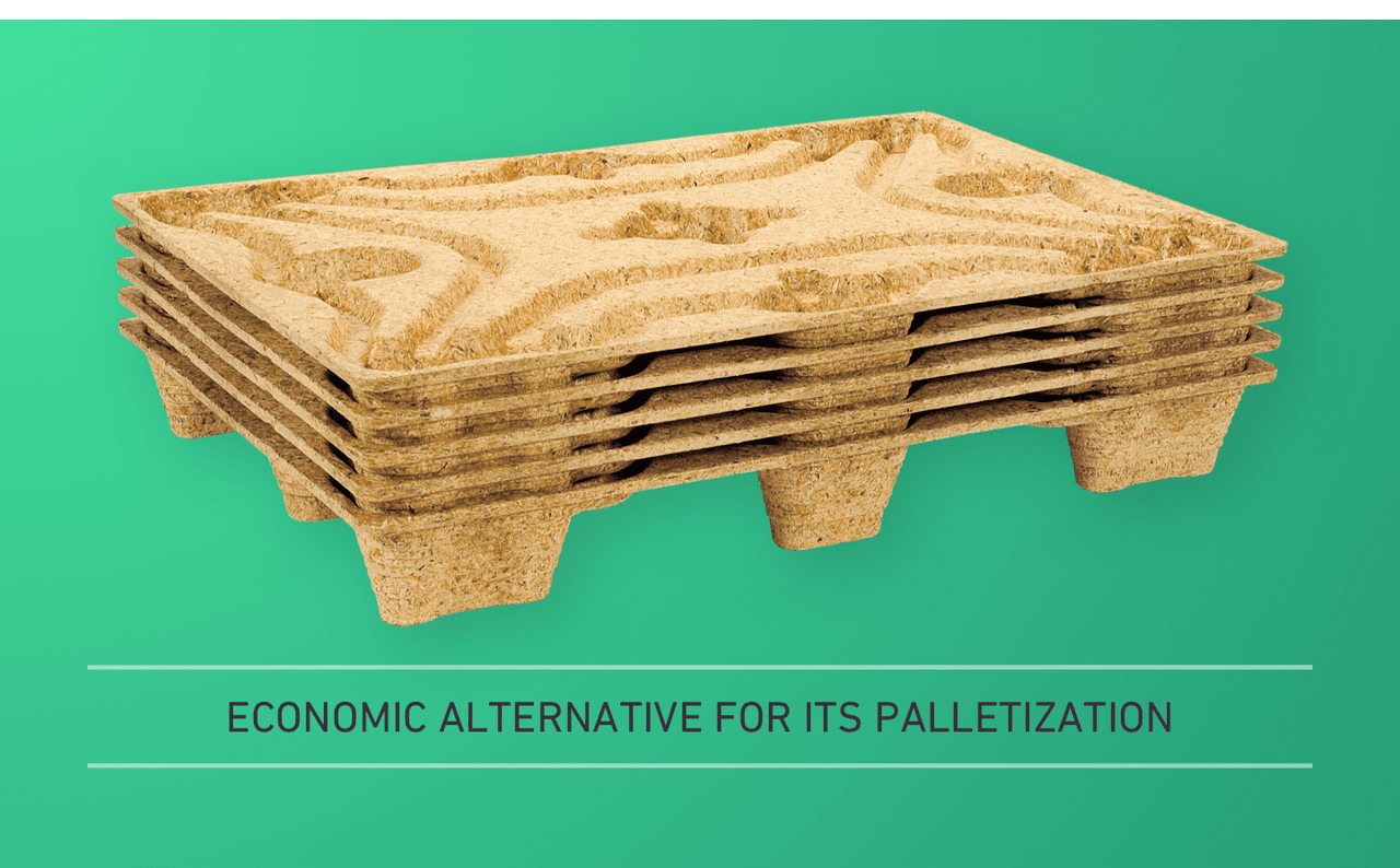 ECONOMIC ALTERNATIVE FOR ITS PALLETIZATION