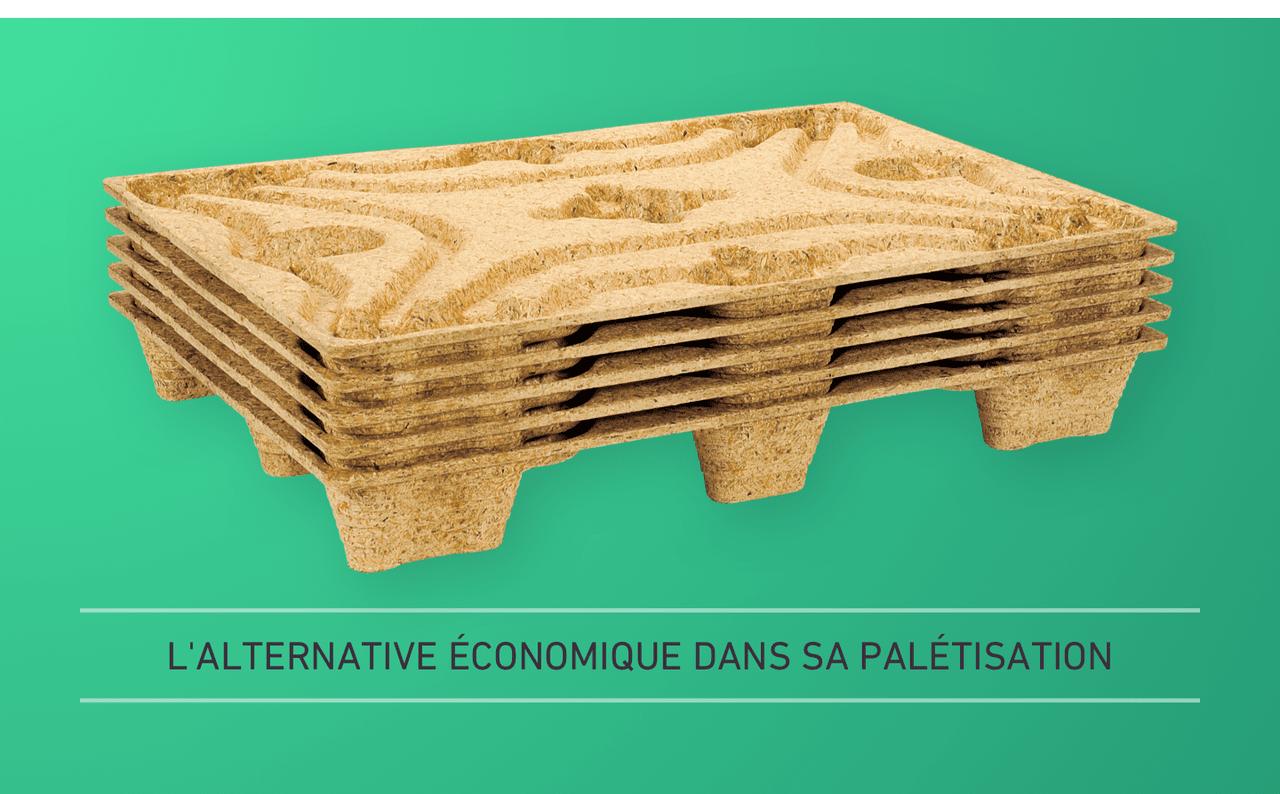 L'ALTERNATIVE ÉCONOMIQUE DANS SA PALÉTISATION