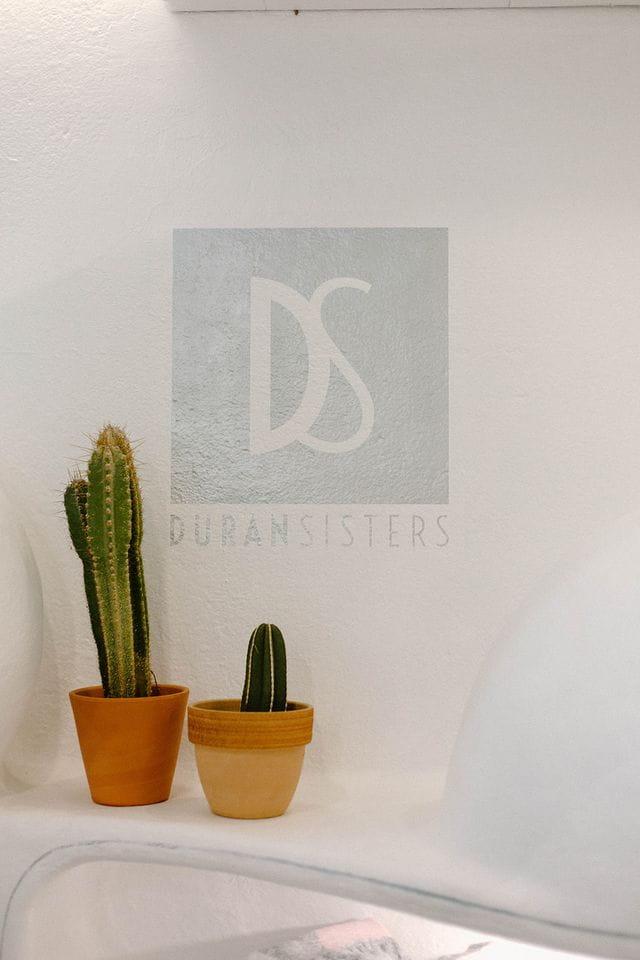 Foto de nuestro logo, con nuestros famosos cactus.