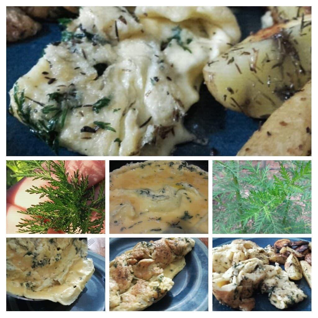 Omelette à l' Artémisia et pommes de terre au romarin