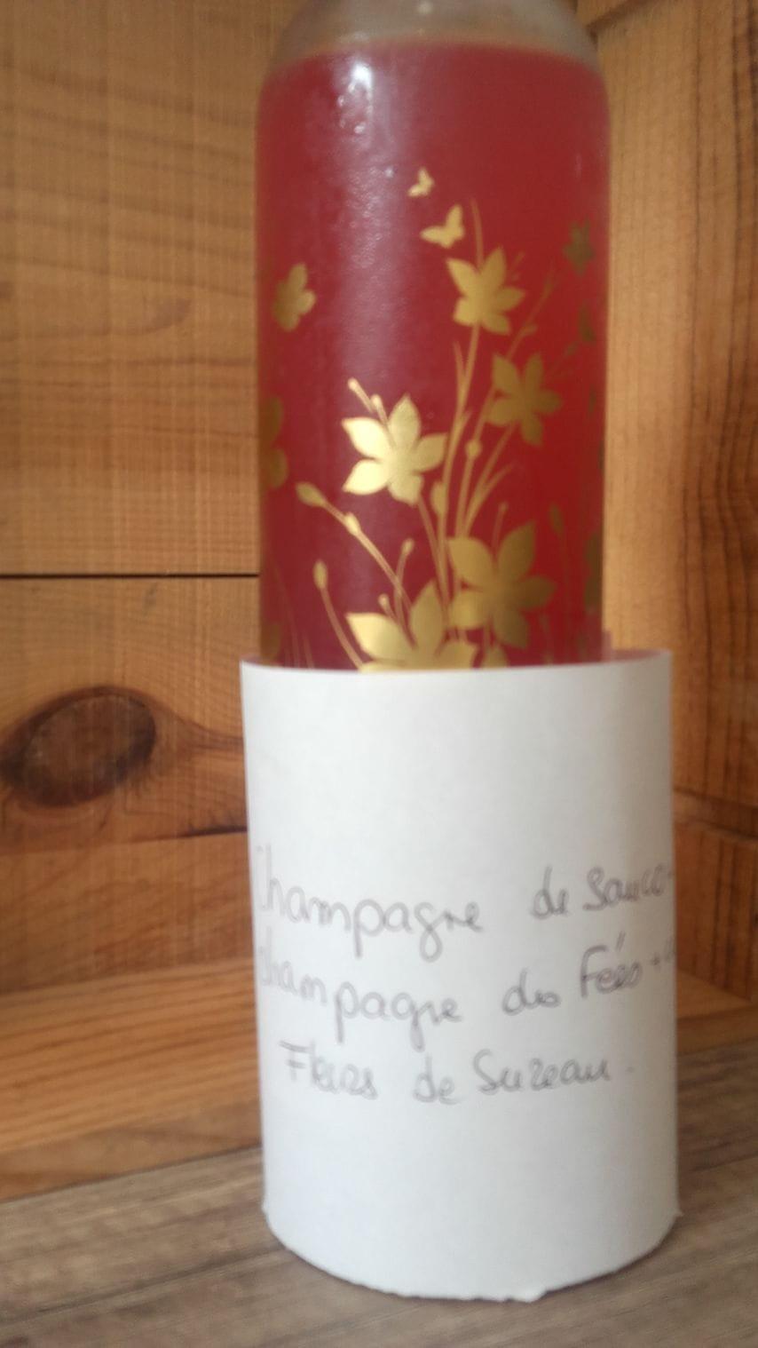champán de saúco, colorante amapola.