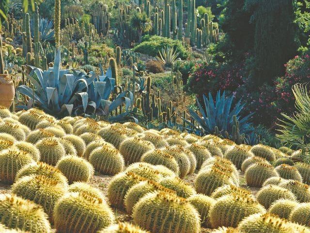 Garten Pinya de Rosa, Blanes