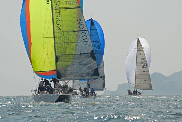 Cruise sailing regatta in the bay
