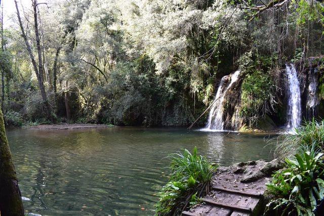 Poza de La Plana