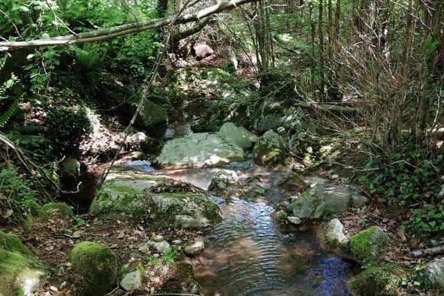Río Brugent