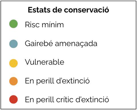 Estats de conservació